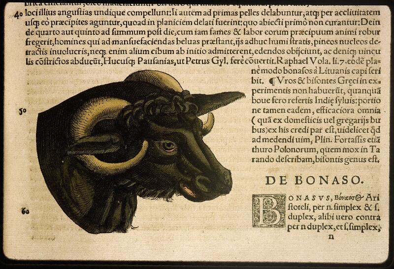 Lyon, Bibl. mun., rés. 031356, p. 0145