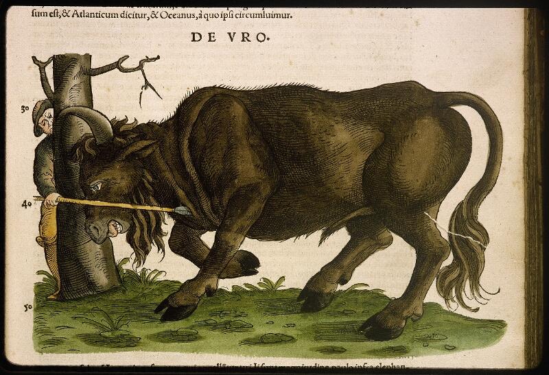 Lyon, Bibl. mun., rés. 031356, p. 0157