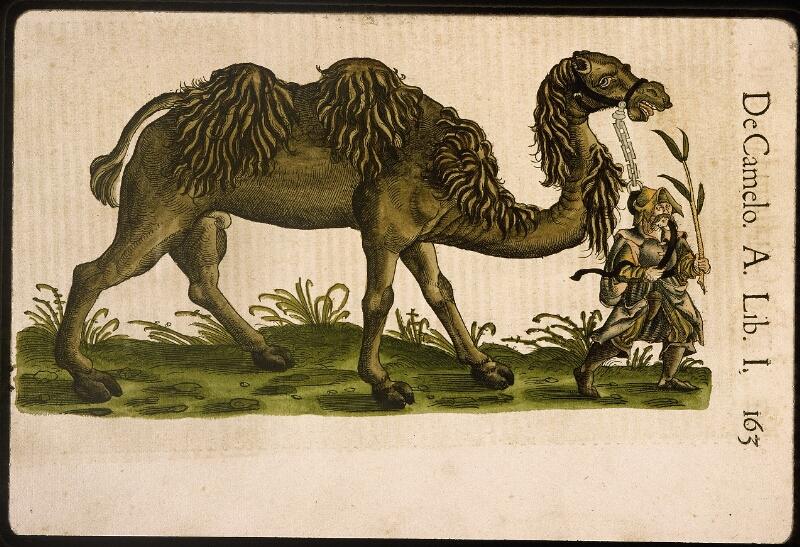 Lyon, Bibl. mun., rés. 031356, p. 0163