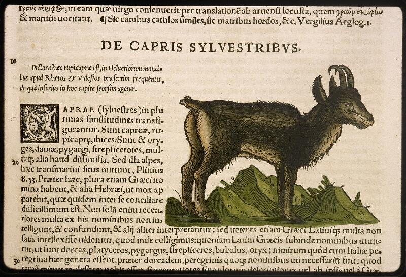 Lyon, Bibl. mun., rés. 031356, p. 0319