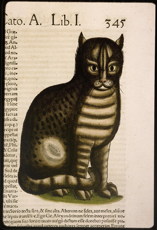 Lyon, Bibl. mun., rés. 031356, p. 0345