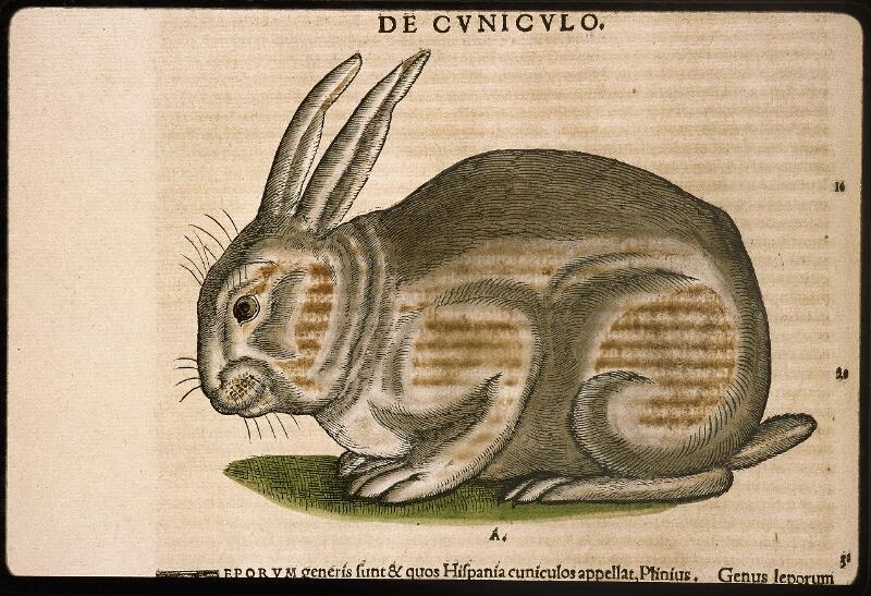 Lyon, Bibl. mun., rés. 031356, p. 0394