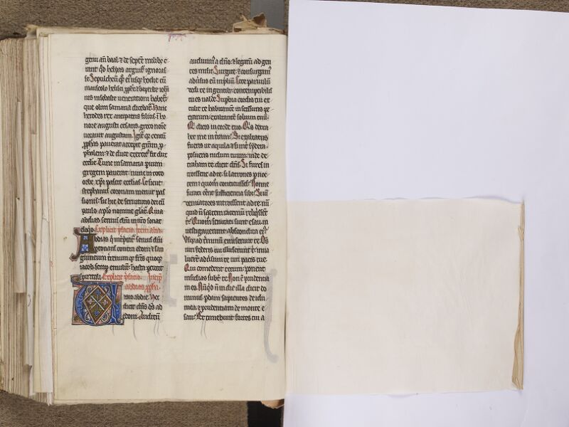NEUFCHATEL-EN-BRAY, Musée Mathon-Durand, Inv. 68.22.2, f. 184v - feuille de soie
