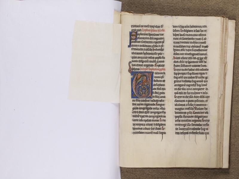 NEUFCHATEL-EN-BRAY, Musée Mathon-Durand, Inv. 68.22.2, feuille de soie - 196