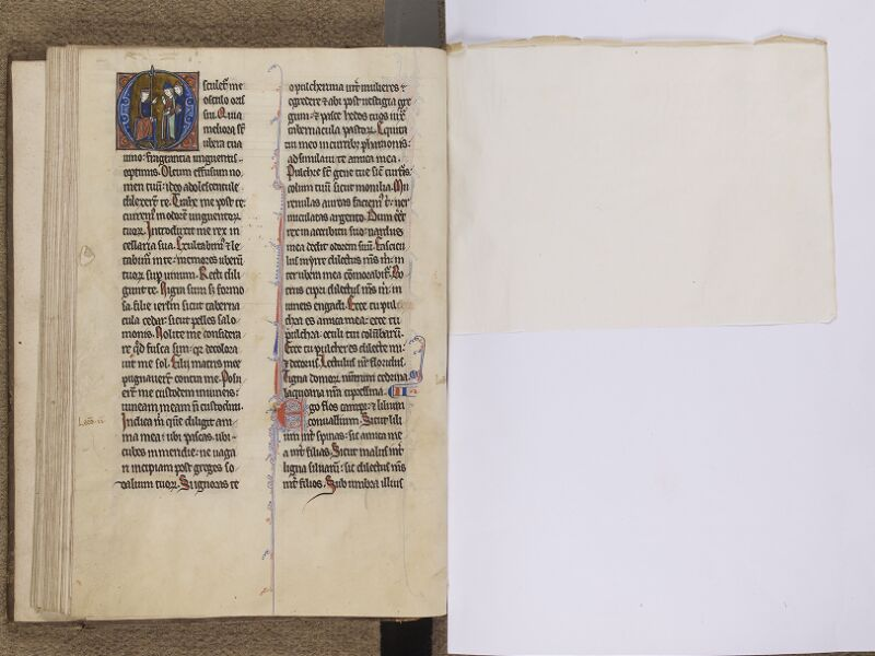 NEUFCHATEL-EN-BRAY, Musée Mathon-Durand, Inv. 68.22.3, f. 053v - feuille de soie