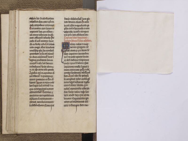 NEUFCHATEL-EN-BRAY, Musée Mathon-Durand, Inv. 68.22.3, f. 071v - feuille de soie