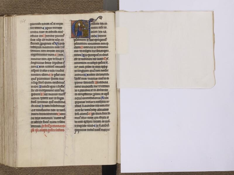 NEUFCHATEL-EN-BRAY, Musée Mathon-Durand, Inv. 68.22.3, f. 147v - feuille de soie