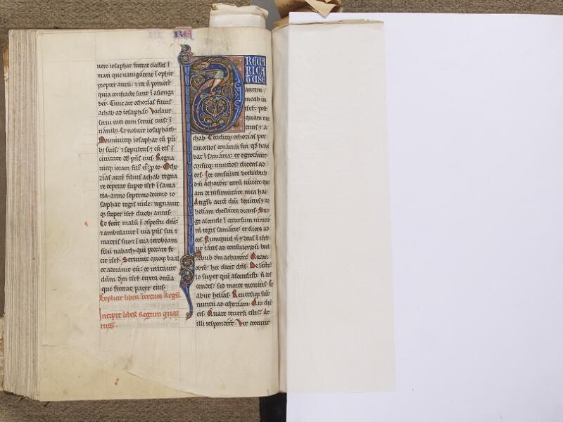 NEUFCHATEL-EN-BRAY, Musée Mathon-Durand, Inv. 68.22.4, f. 089v - feuille de soie