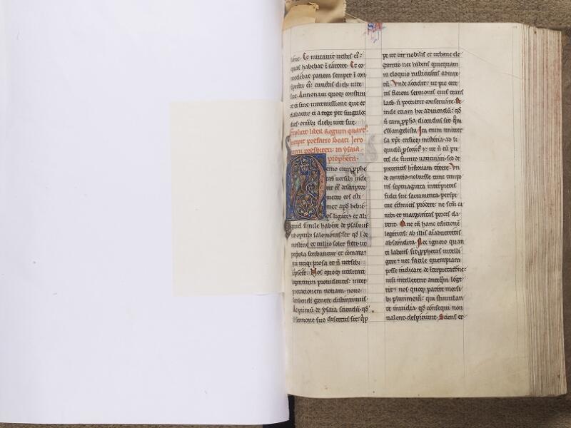 NEUFCHATEL-EN-BRAY, Musée Mathon-Durand, Inv. 68.22.4, feuille de soie - 119