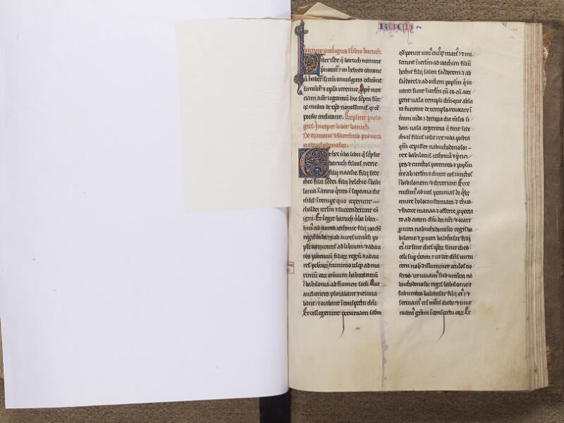NEUFCHATEL-EN-BRAY, Musée Mathon-Durand, Inv. 68.22.4, feuille de soie - 215