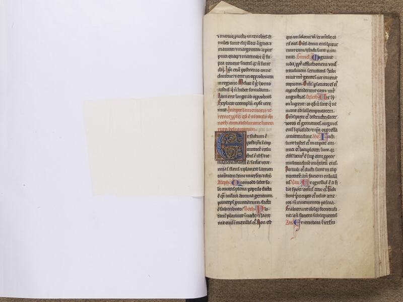 NEUFCHATEL-EN-BRAY, Musée Mathon-Durand, Inv. 68.22.4, feuille de soie - 221