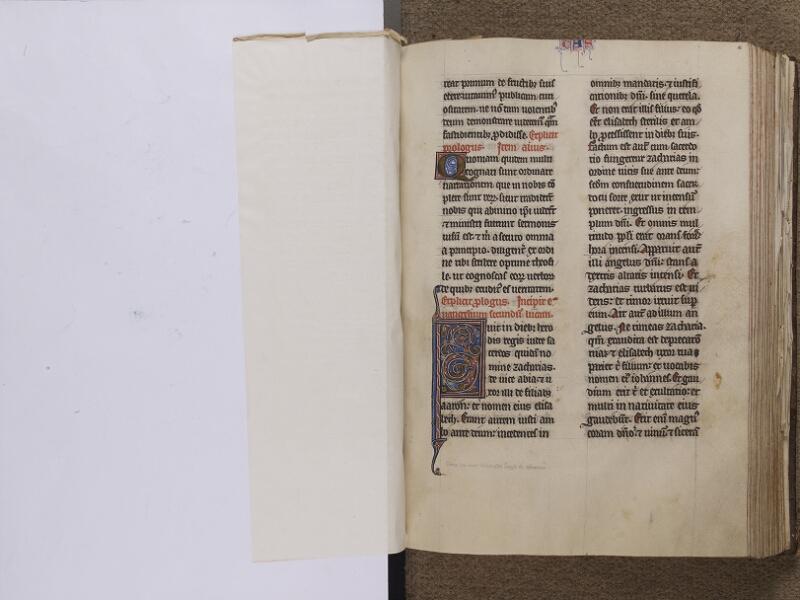 NEUFCHATEL-EN-BRAY, Musée Mathon-Durand, Inv. 68.22.5, feuille de soie - 056