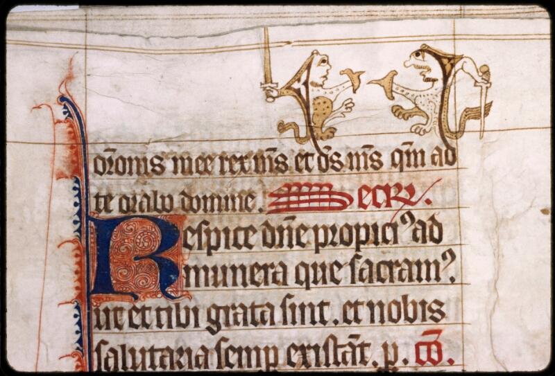 Sées, Bibl. de l'Evêché, ms. 0003, f. 052