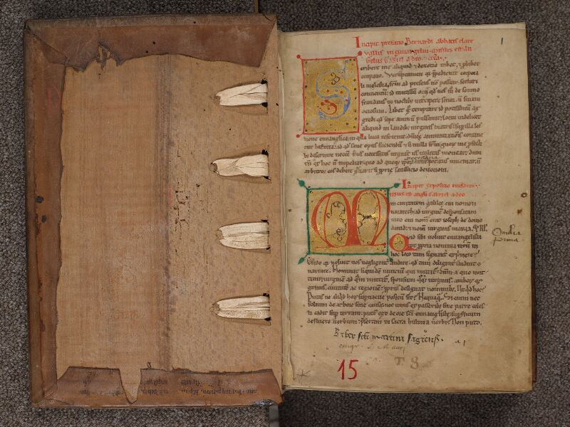 SEES, Archives diocésaines, 015 (T. q. 8), contreplat superieur - f. 001r