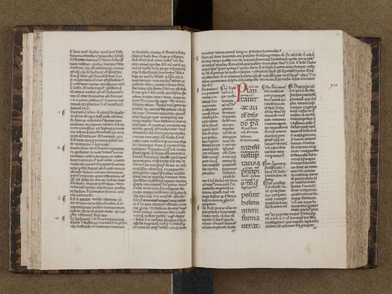 SAINT-OMER, Bibliothèque municipale, 0177, f. 019v - 020