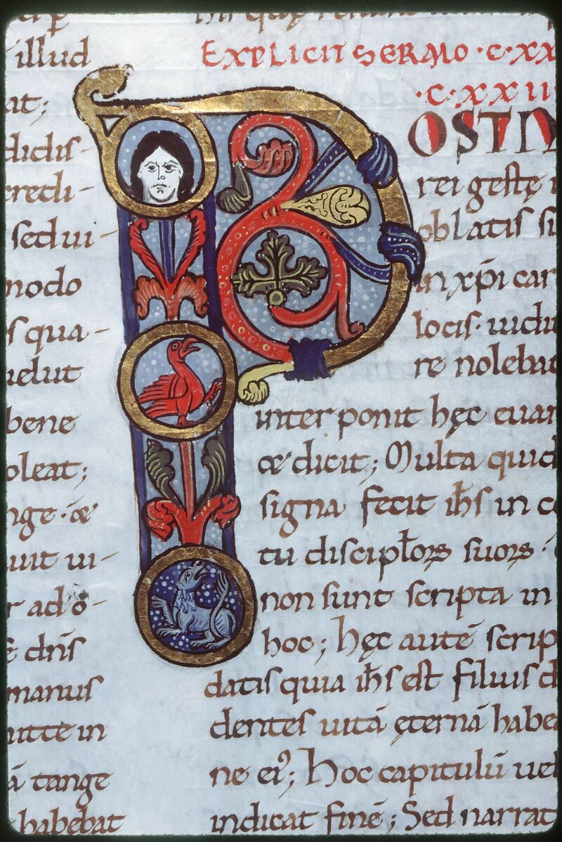 Tours, Bibl. mun., ms. 0291, f. 146