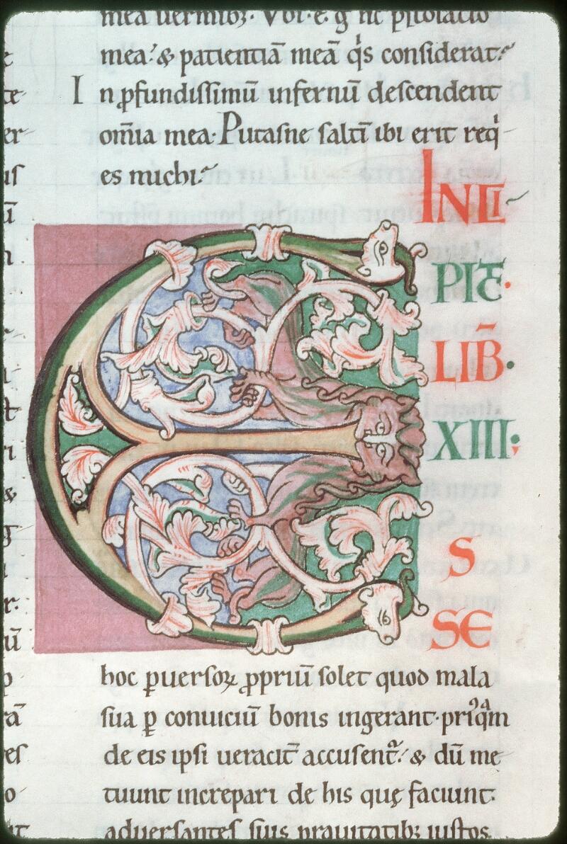 Tours, Bibl. mun., ms. 0319, f. 029v - vue 2