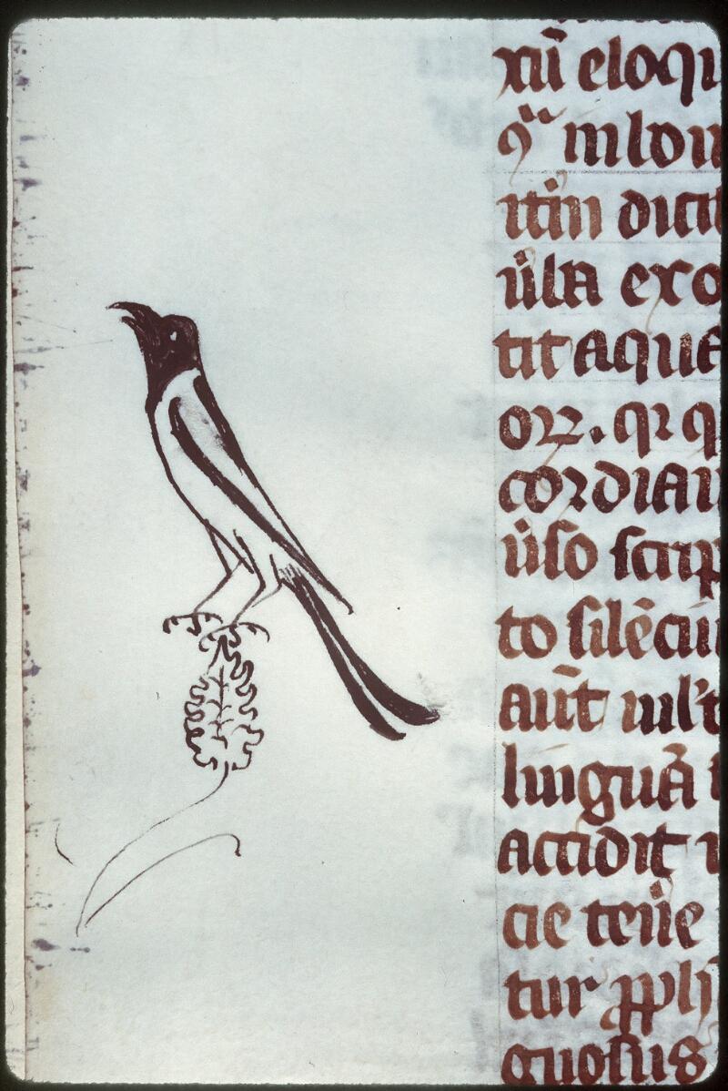 Tours, Bibl. mun., ms. 0328, f. 044v