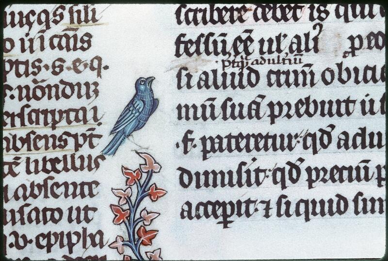 Tours, Bibl. mun., ms. 0558, f. 135 - vue 3