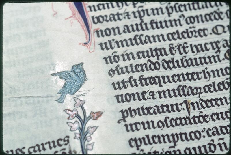 Tours, Bibl. mun., ms. 0558, f. 155v - vue 4