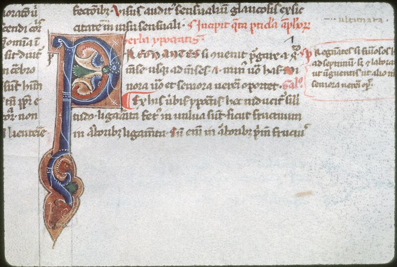 Tours, Bibl. mun., ms. 0791, f. 014