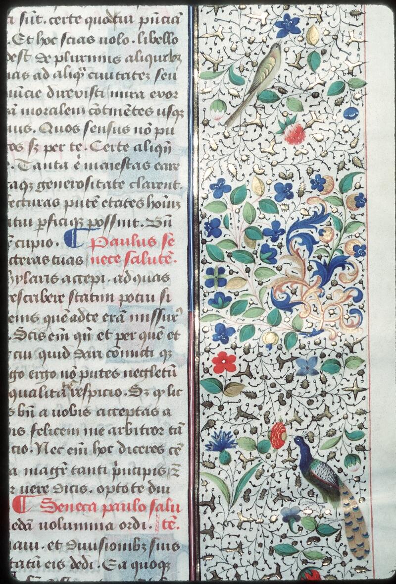 Tours, Bibl. mun., ms. 0693, f. 064 - vue 3