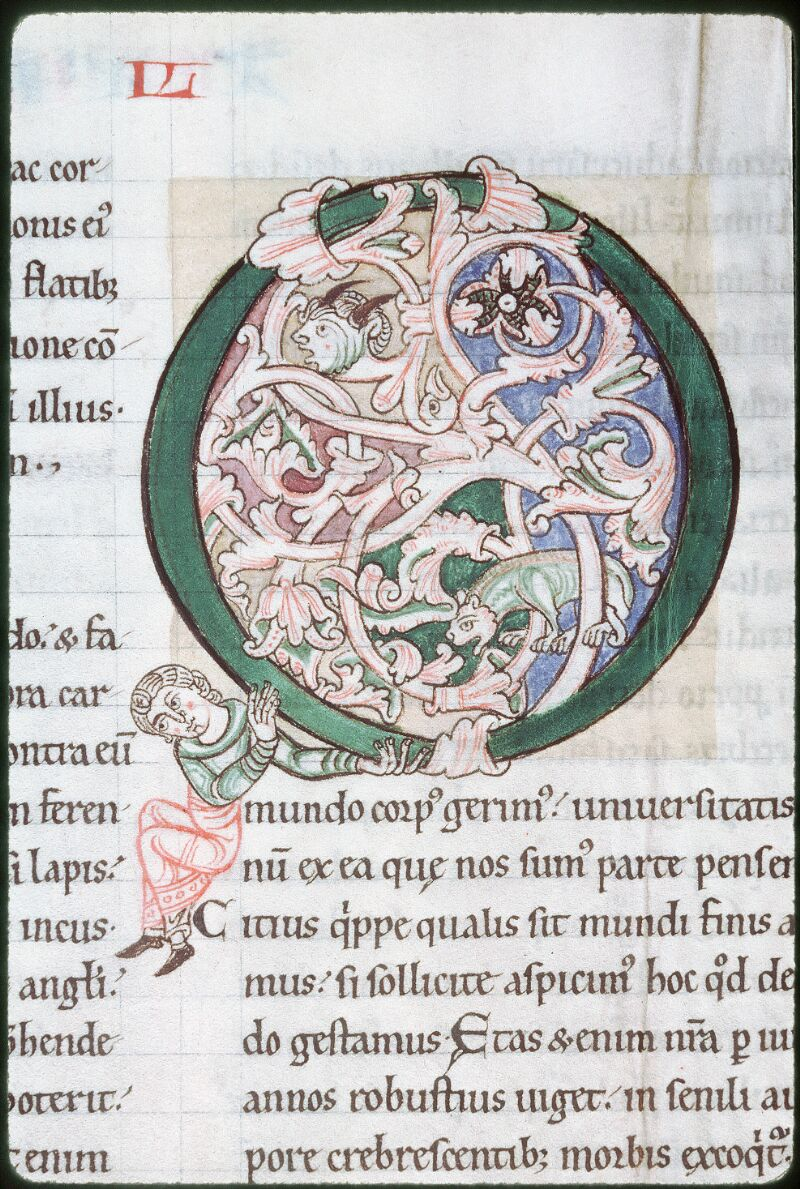 Tours, Bibl. mun., ms. 0320, f. 164v - vue 3