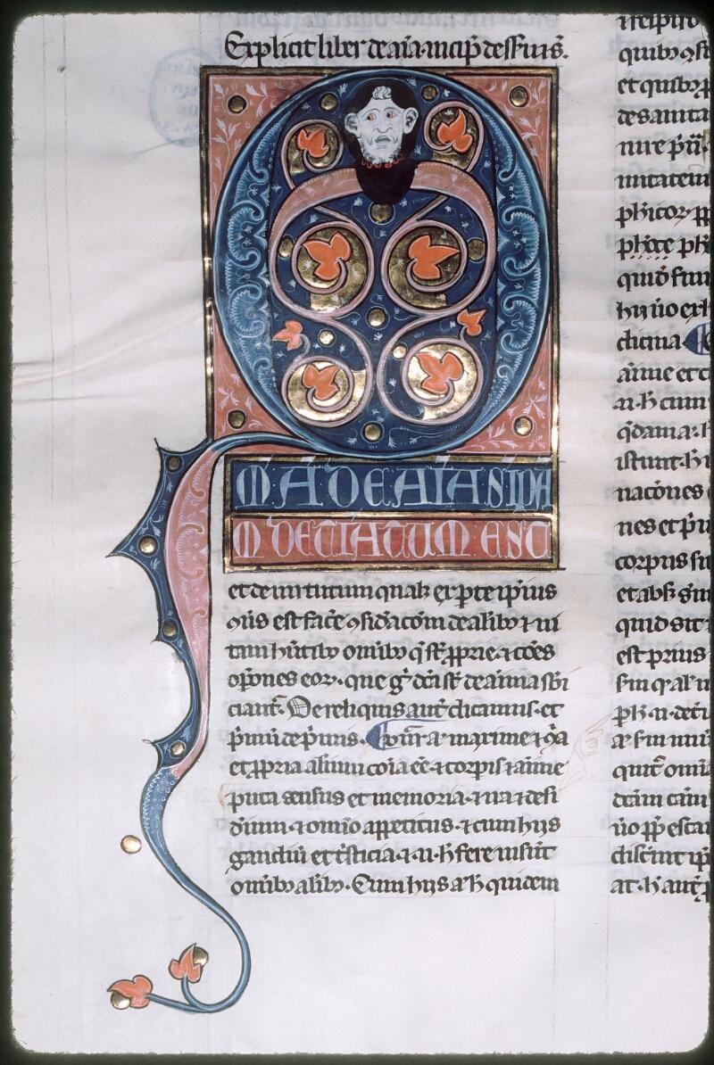 Tours, Bibl. mun., ms. 0679, f. 166v - vue 1