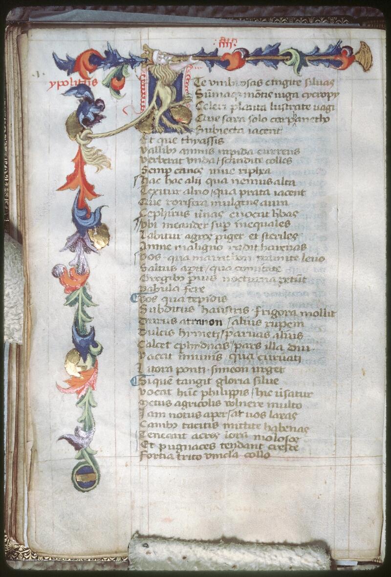 Tours, Bibl. mun., ms. 0926, f. 049v - vue 1
