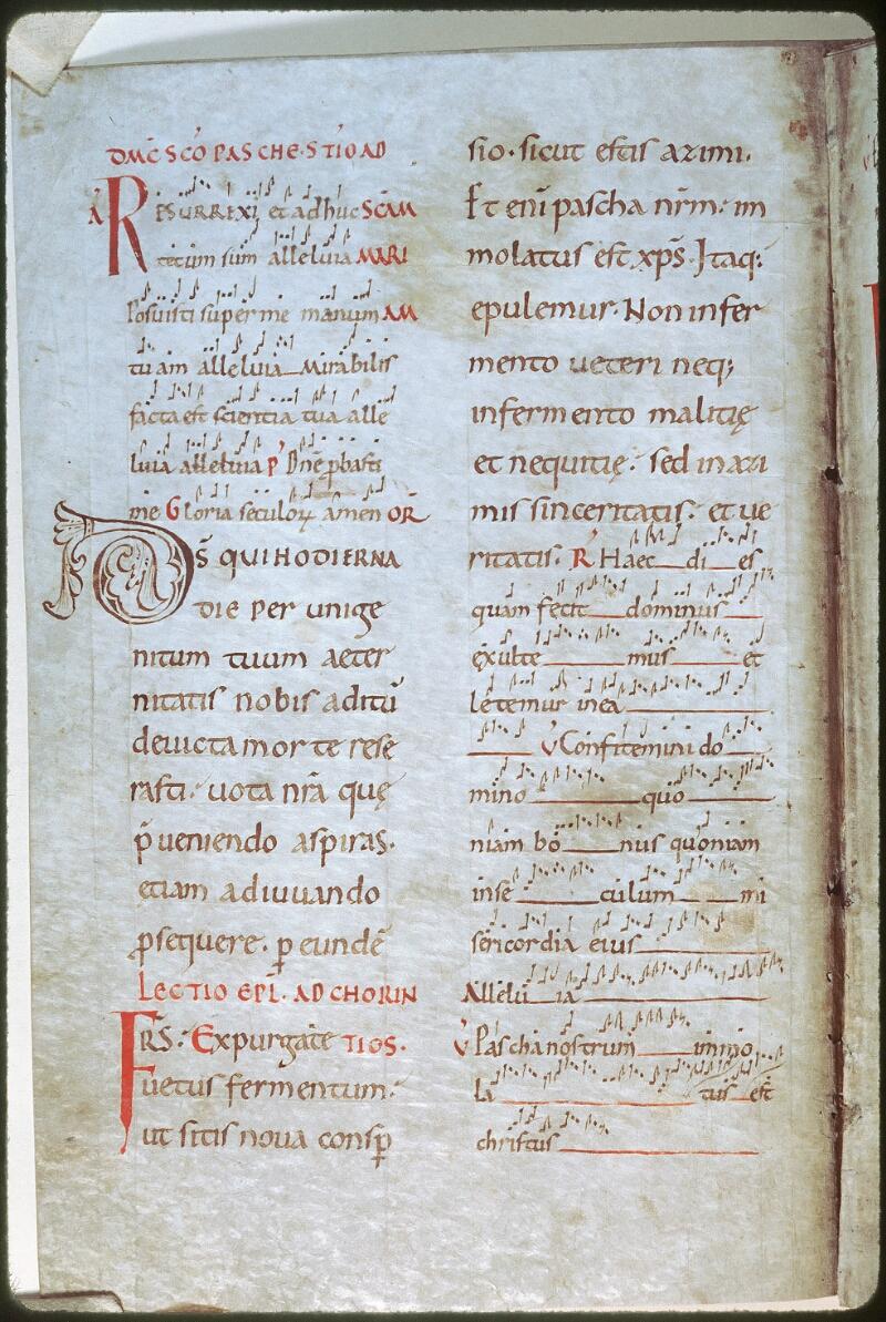 Tours, Bibl. mun., ms. Diocèse 01, f. 214v