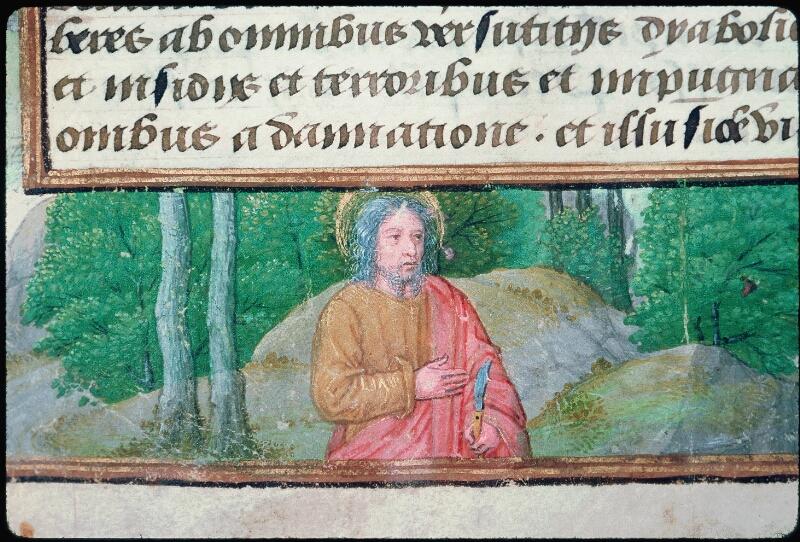 Tours, Bibl. mun., ms. Diocèse 05, f. 113v - vue 2
