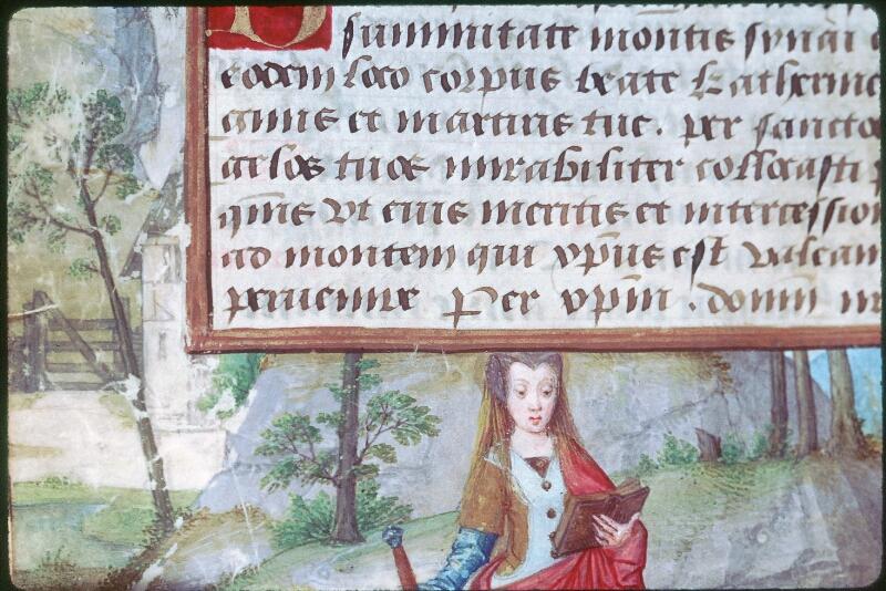 Tours, Bibl. mun., ms. Diocèse 05, f. 124v - vue 2