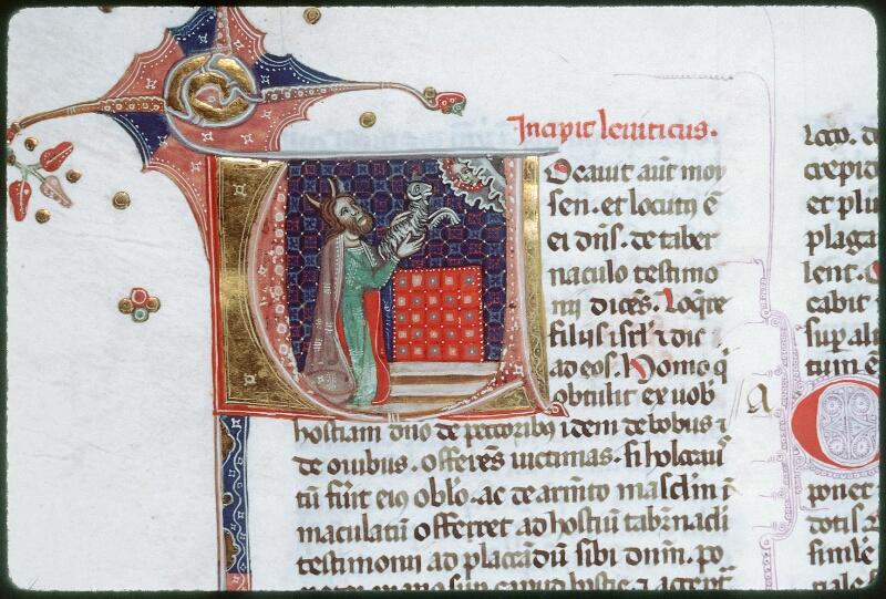 Tours, Bibl. mun., ms. 0008, f. 042v - vue 2