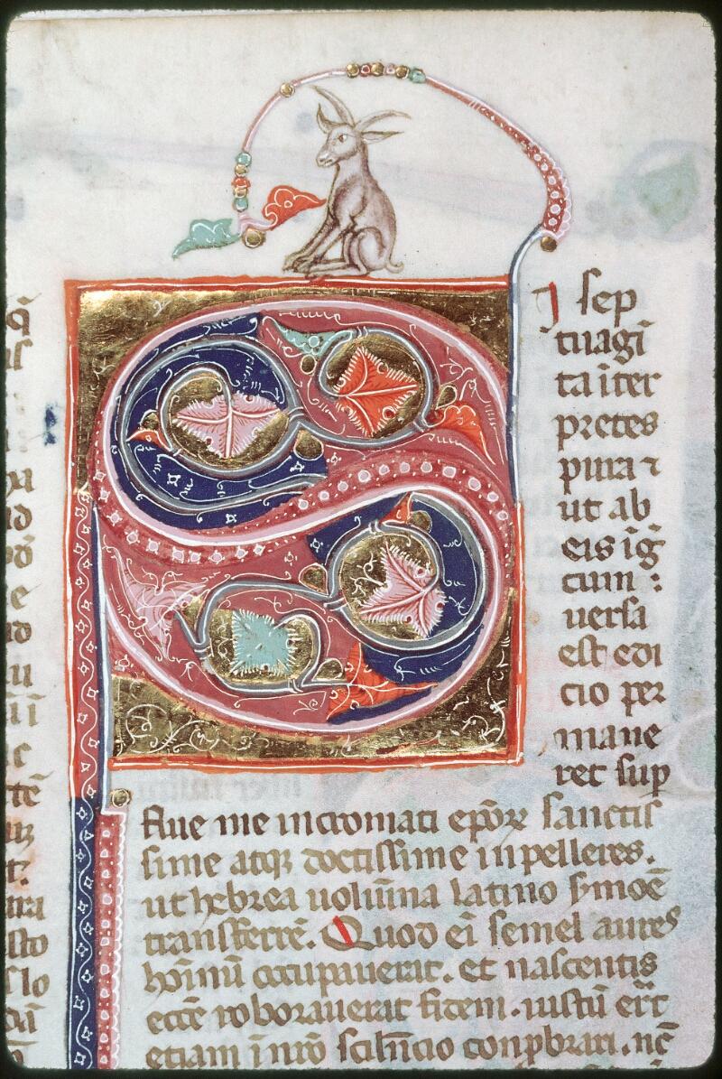 Tours, Bibl. mun., ms. 0008, f. 175v - vue 1