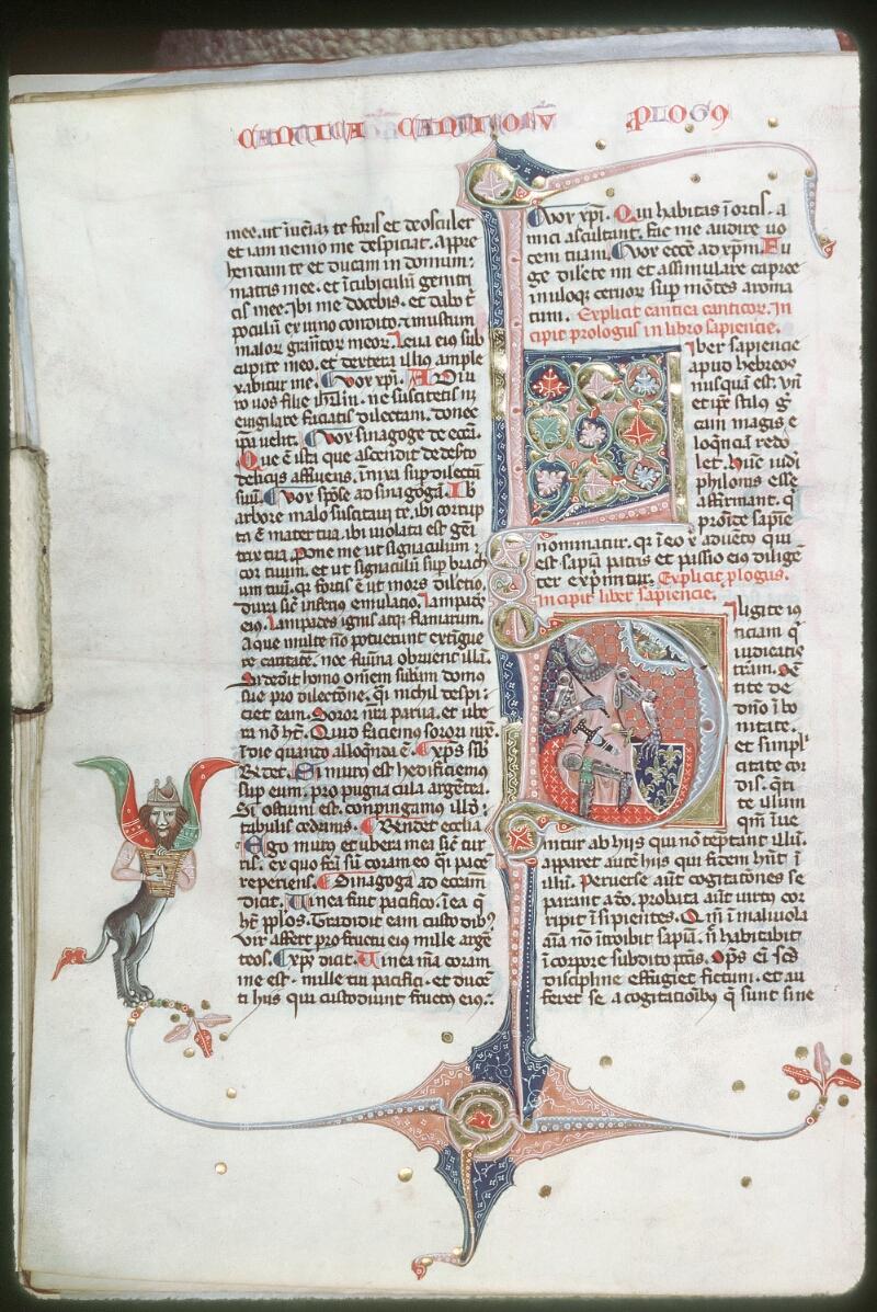 Tours, Bibl. mun., ms. 0008, f. 299v - vue 1