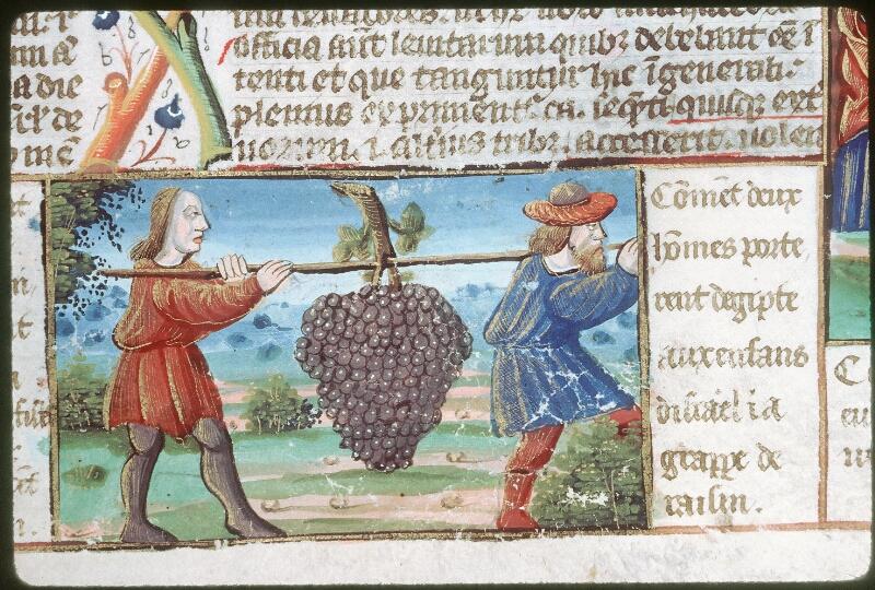 Tours, Bibl. mun., ms. 0052, f. 106 - vue 5