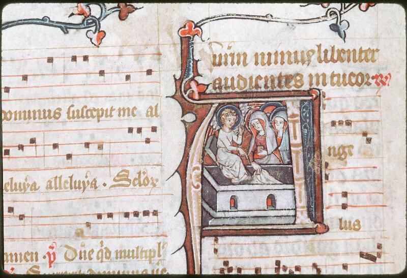 Tours, Bibl. mun., ms. 0149, f. 300v - vue 2