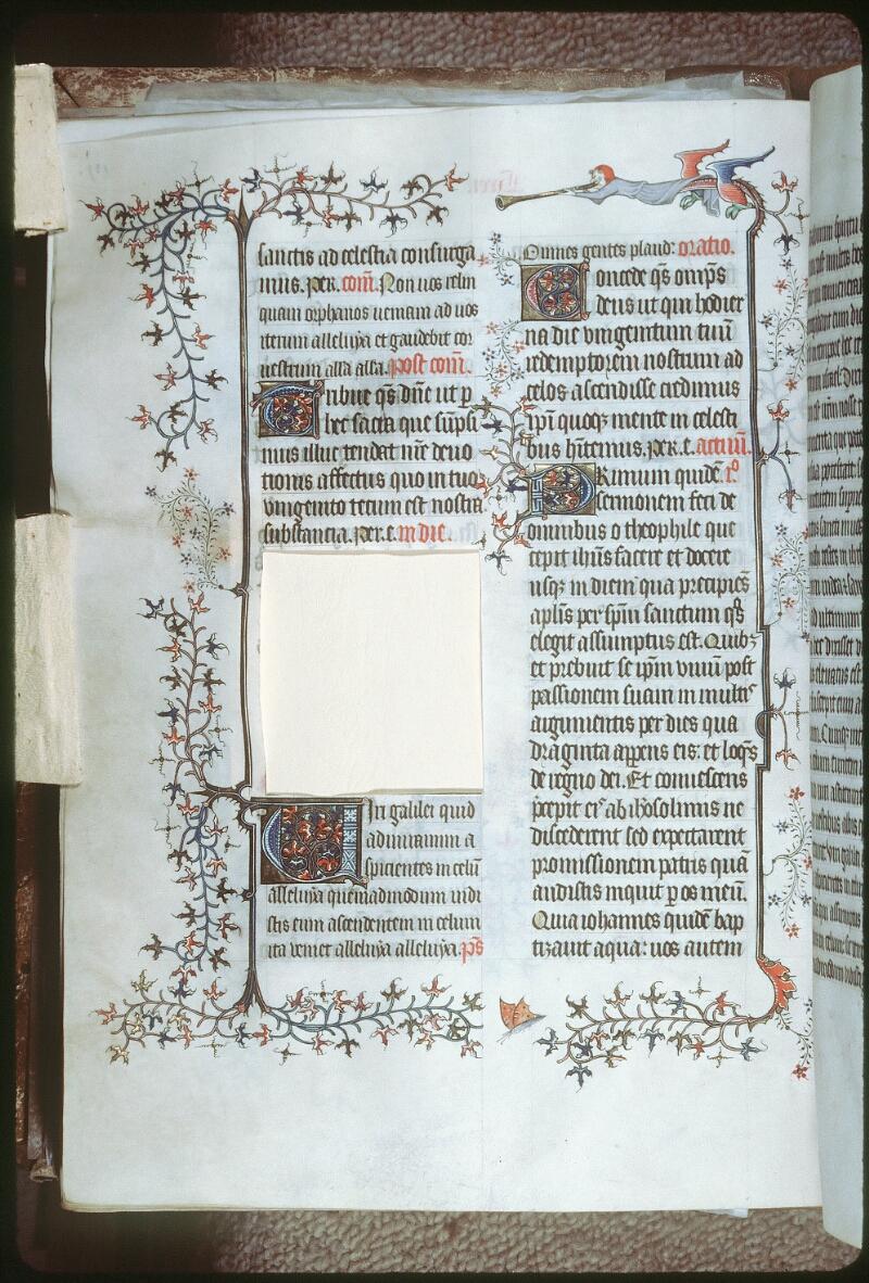 Tours, Bibl. mun., ms. 0185, f. 137v - vue 1