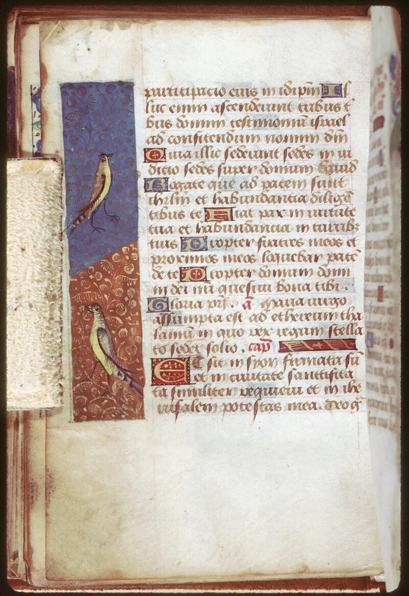Tours, Bibl. mun., ms. 0229, f. 038v