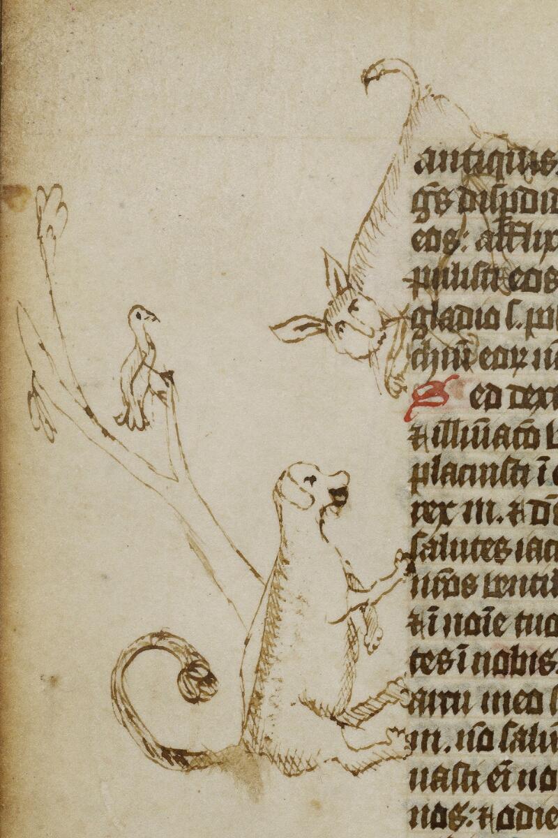 Valognes, Bibl. mun., ms. 0004, f. 208v - vue 2