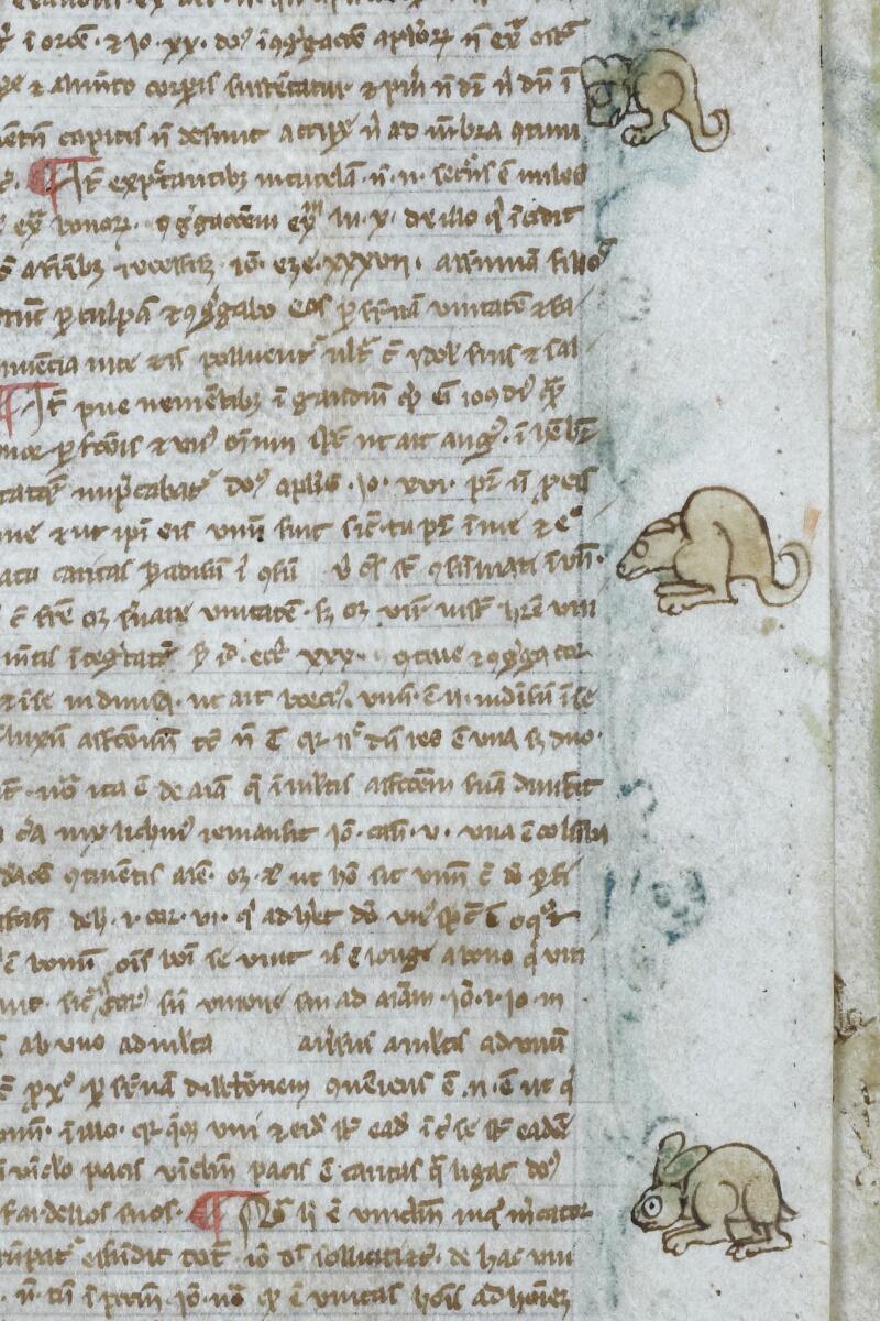 Vannes, Bibl. mun., ms. 0001, f. 047