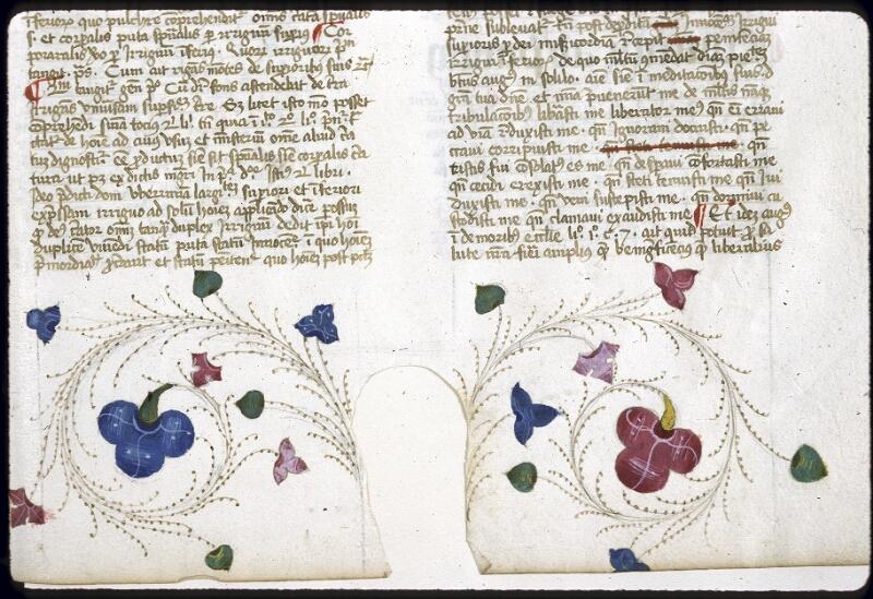 Lyon, Bibl. mun., ms. 0206, f. 098 - vue 3