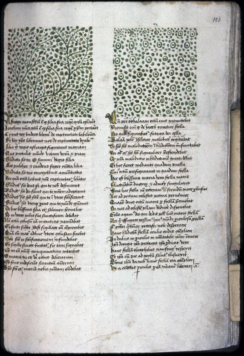 Lyon, Bibl. mun., ms. 0245, f. 123 - vue 1