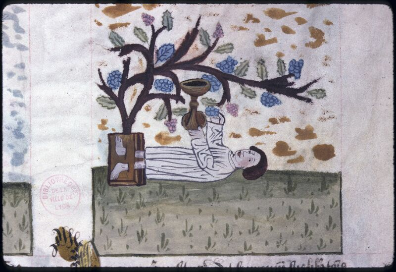 Lyon, Bibl. mun., ms. 0245, f. 127v - vue 2