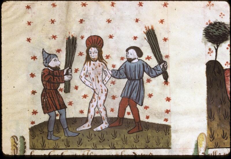 Lyon, Bibl. mun., ms. 0245, f. 161 - vue 1