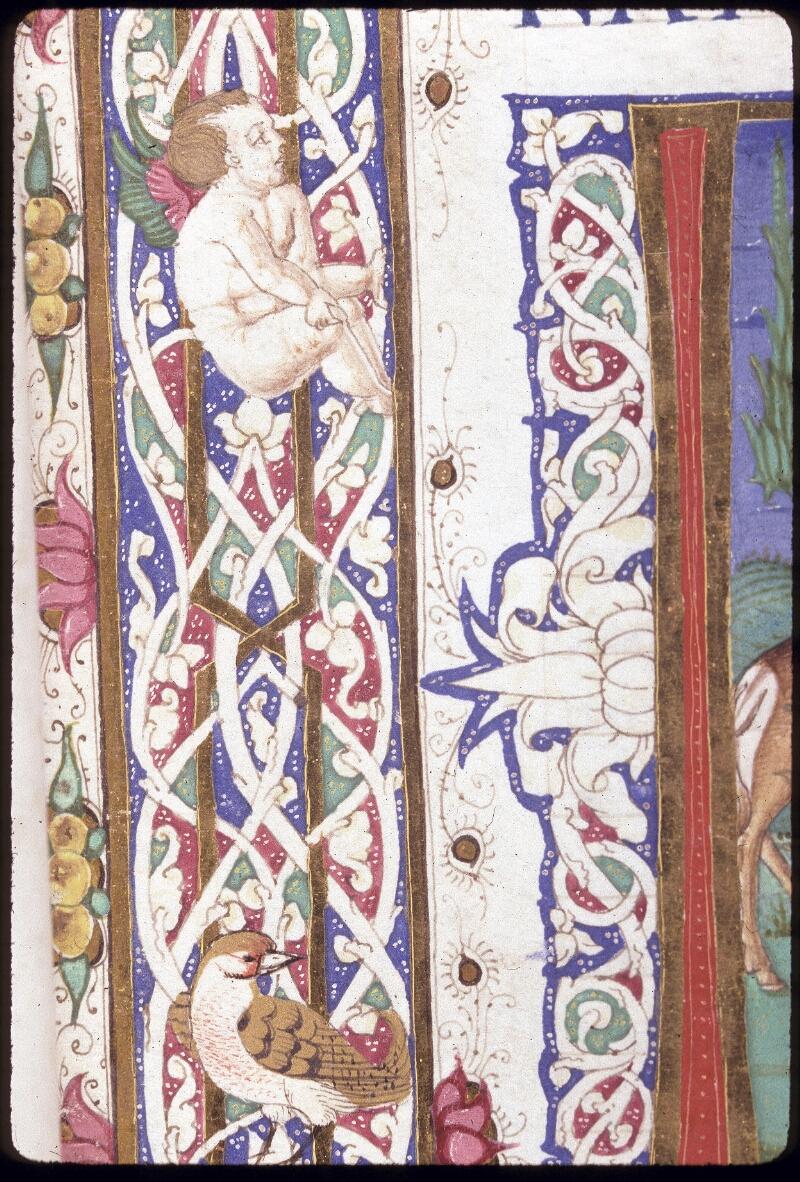 Lyon, Bibl. mun., ms. 0309, f. 001 - vue 5