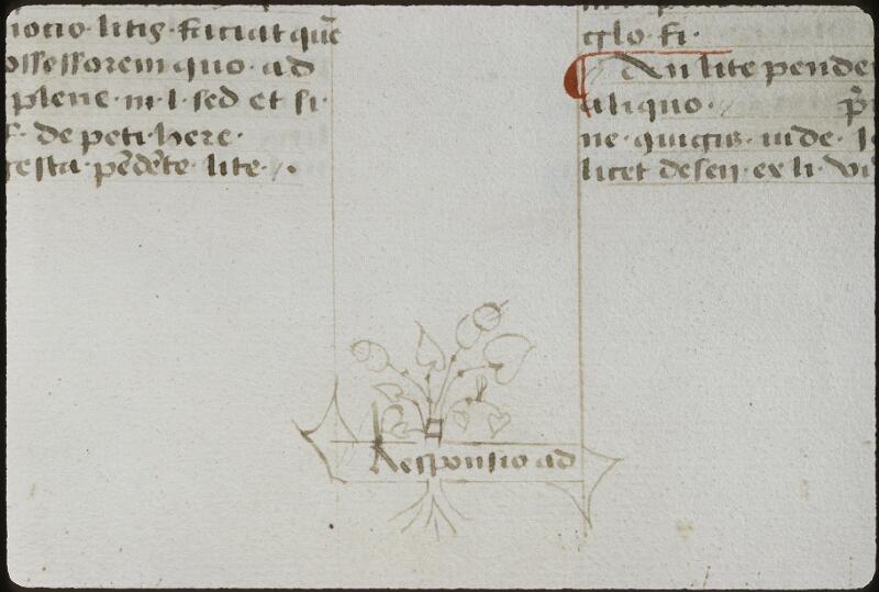 Lyon, Bibl. mun., ms. 0392, f. 176v