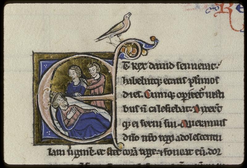 Lyon, Bibl. mun., ms. 0409, f. 156v