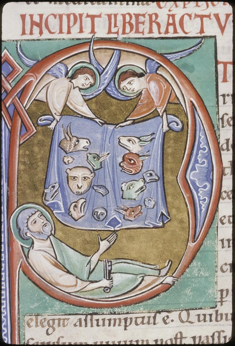 Lyon, Bibl. mun., ms. 0411, f. 219v - vue 2