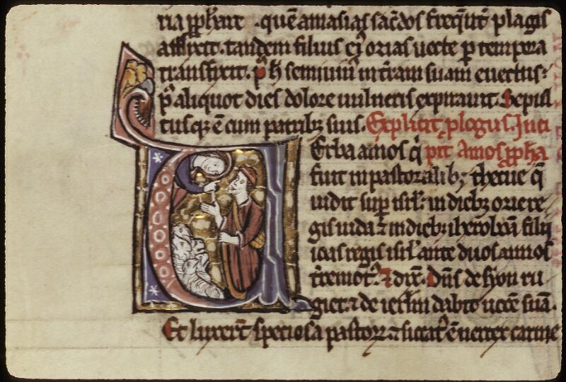 Lyon, Bibl. mun., ms. 0421, f. 315v